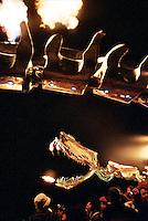 Art work by the Lotus Girls at Burning Man Festival