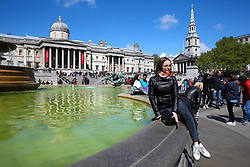 © Licensed to London News Pictures. 04/05/2019. London, UK. A woman sitting on the edge of Trafalgar Square fountain, which is covered in green algae. Recent warm weather in the capital has caused large amounts of green algae to form in the ponds in Trafalgar Square's fountains. Photo credit: Dinendra Haria/LNP