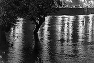 Paris . Flooding . The Seine river  IN Paris city center. France. Paris.  Saint Louis island  quay. / Quai de Bourbon on Saint Louis island
