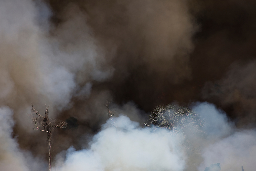 Fires burn the Amazon rainforest to clear the ground for cattle or crop farming in Sao Felix Do Xingu municipality, in Para State, Brazil, August 13, 2008..Daniel Beltra/Greenpeace