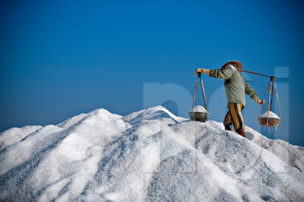 A vietnamese woman carries a yoke full of salt over the top of a massive bittern mound. Doc Let salt marsh, Vietnam, Asia