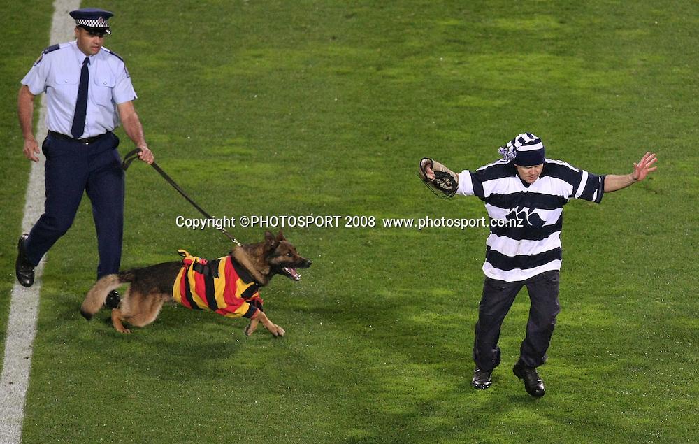 Pre match entertainment police dog. Air NZ Cup, Waikato v Auckland, Waikato Stadium, Hamilton, Saturday 30 August 2008. Waikato won 34-13. Photo: Stephen Barker/PHOTOSPORT