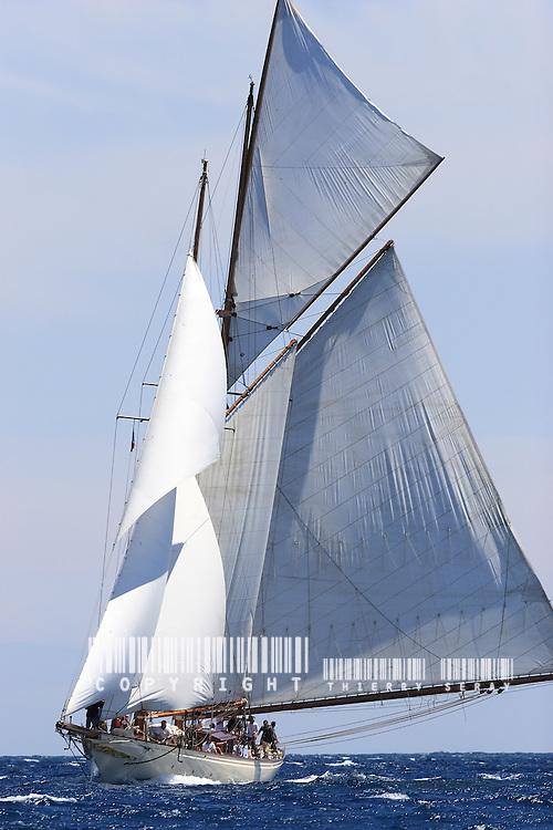 Sunshine. Goëlette aurique (replique). W. Fife. .Voiles d'Antibes 2007.
