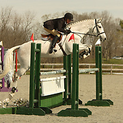 Martha Griggs (CAN) and Gregory at the Morven Park Spring Horse Trials held in Leesburg, Virginia
