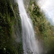 Pico Bonito National Park, Honduras.