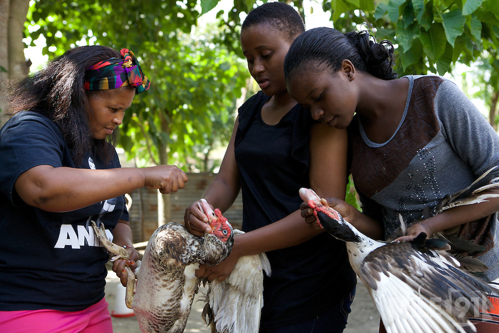 Haika Mshomi teaching two of her daughters how to look after ducks.<br /> <br /> Haika set up and now runs a poultry business selling chickens, their eggs and also ducks, Mail Mojo Soweto, Tanzania.<br /> <br /> She attended MKUBWA enterprise training run by the Tanzania Gatsby Trust in partnership with The Cherie Blair Foundation for Women.