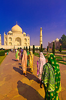 The Taj Mahal, Agra, Uttar Pradesh, India