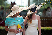 © Licensed to London News Pictures. 31/07/2014. Chichester, UK Ladies Day at Glorious Goodwood at Goodwood racecourse in Chichester today 31/07/14. Photo credit : Stephen Simpson/LNP