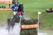 Esi Pheonix ridden by Angus Smales in the Equi-Trek CCI-L4* Cross Country during the Bramham International Horse Trials 2019 at Bramham Park, Bramham, United Kingdom on 8 June 2019.