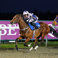 Jimmy Elder and Sean Levey winning the 6.00 race
