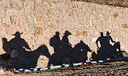 Mexican cowboys cast shadows along a wall as they ride to the top of Cubilete Mountain during the annual Cabalgata de Cristo Rey pilgrimage January 6, 2017 in Guanajuato, Mexico. Thousands of Mexican cowboys and horse take part in the three-day ride to the mountaintop shrine of Cristo Rey.