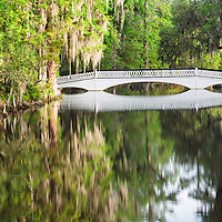 Long bridge reflecting in the moss adorned tree lined pond at Magnolia Plantation, near Charleston, SC.