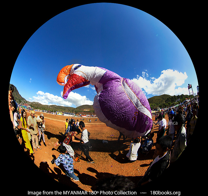 A Rhinoceros Hornbill balloon