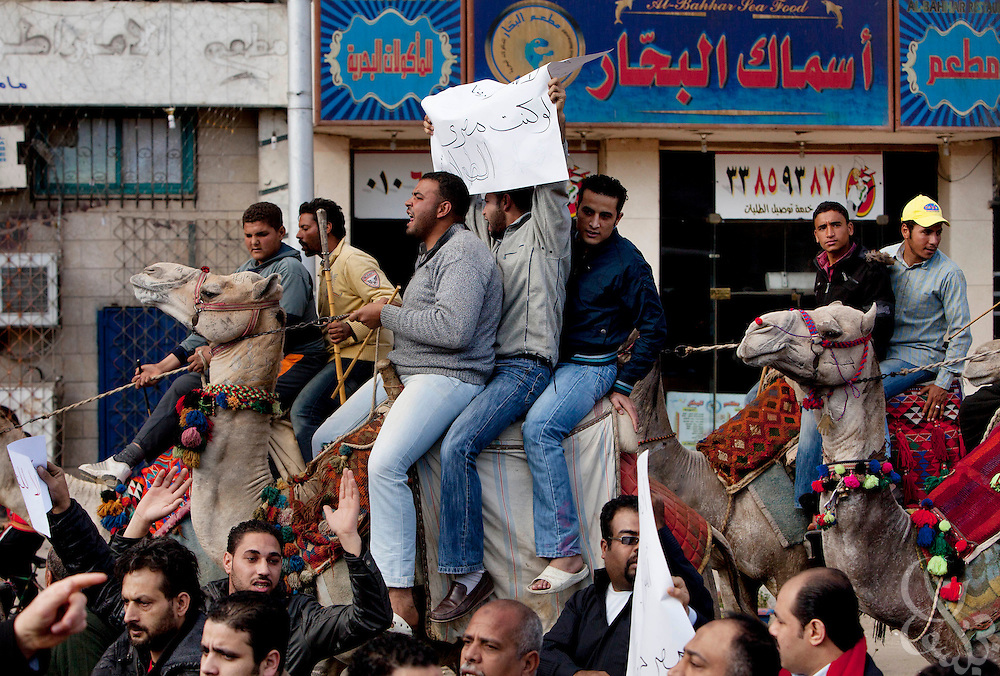 Egyptian men, some on camels and horseback, protest in the Giza district of Cairo, Egypt January 31, 2010. The men, who work as touts at the pyramids were protesting low wages and corruption of local officials in charge of the Pyramids tourist area.