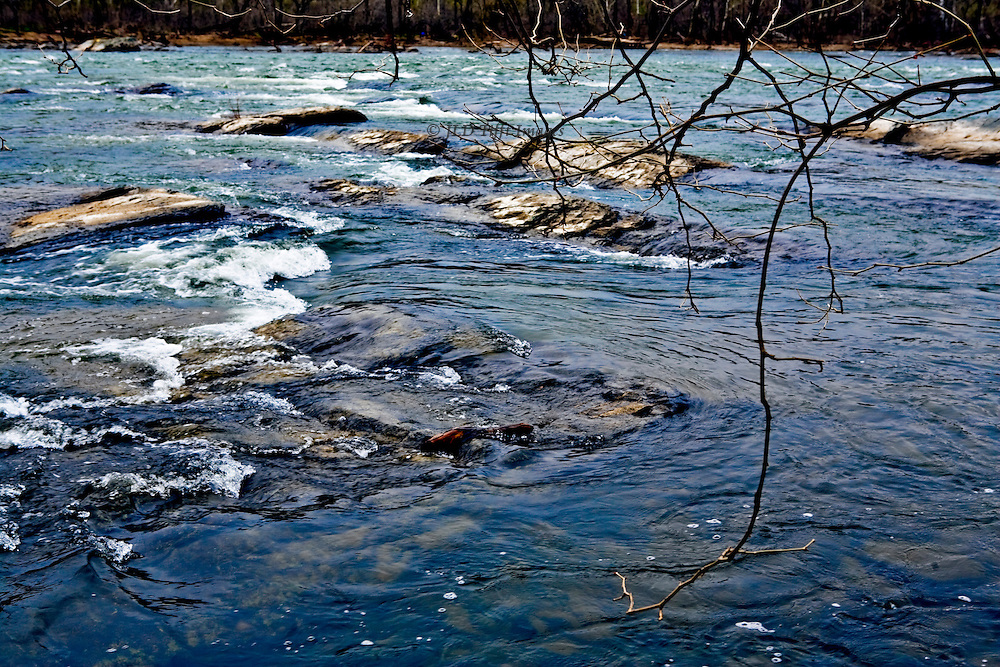 Potomac River in winter: shallow and deep waters rushing over boulders and logs in a close view riverscape.  At this level upriver, swimming and boating is dangerous.
