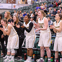 The women's bench explodes during the home game on December  2 at Centre for Kinesiology, Health and Sport. Credit: Arthur Ward/Arthur Images