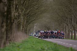 The peloton stays together in the first half of the first lap during Stage 4 of the Healthy Ageing Tour - a 126.6 km road race, starting and finishing in Finsterwolde on April 8, 2017, in Groeningen, Netherlands.