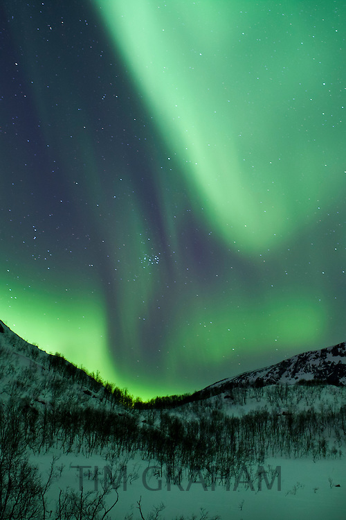 The Aurora Borealis, the spectacular Northern Lights fill the sky with dazzling green light above Kvaloya island at Tromso in the Arctic Circle in Northern Norway