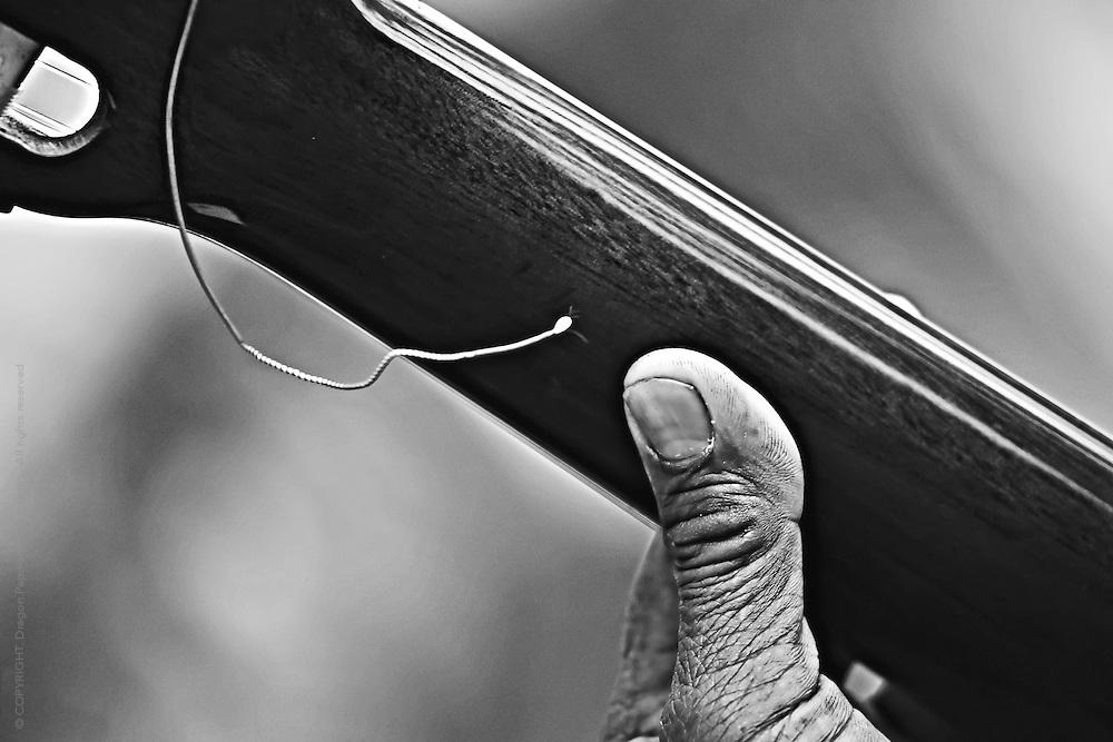 black & white closeup of thumb on neck of ukelele