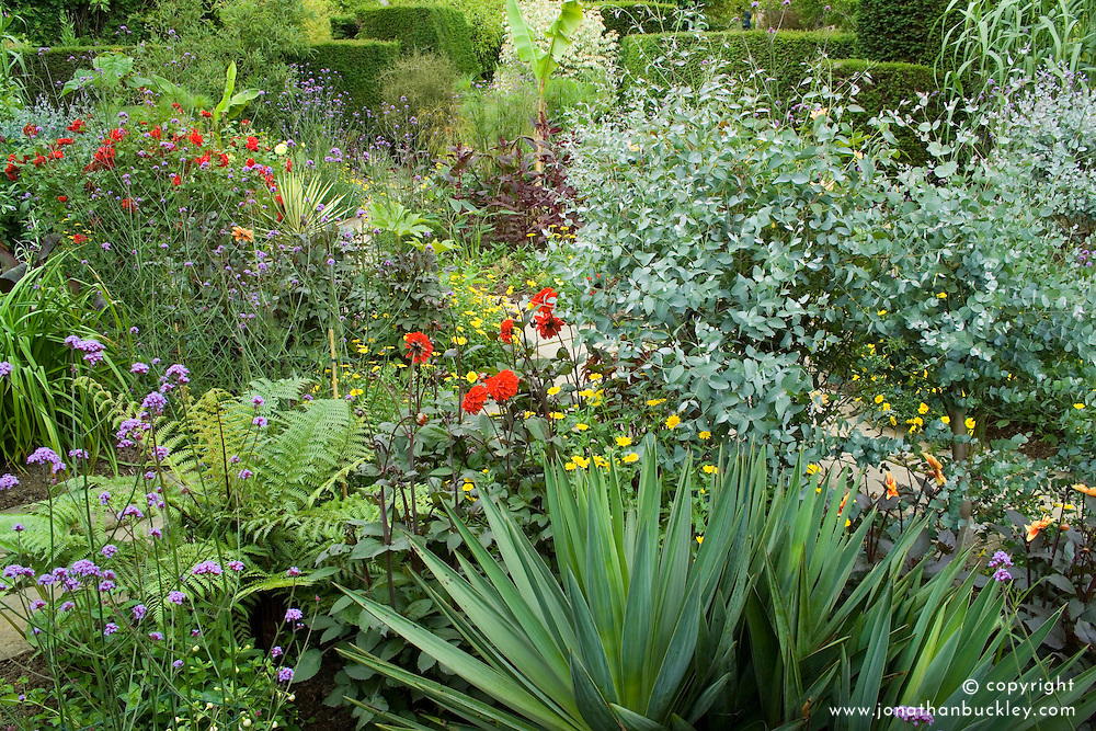 The exotic garden at Great Dixter in early July