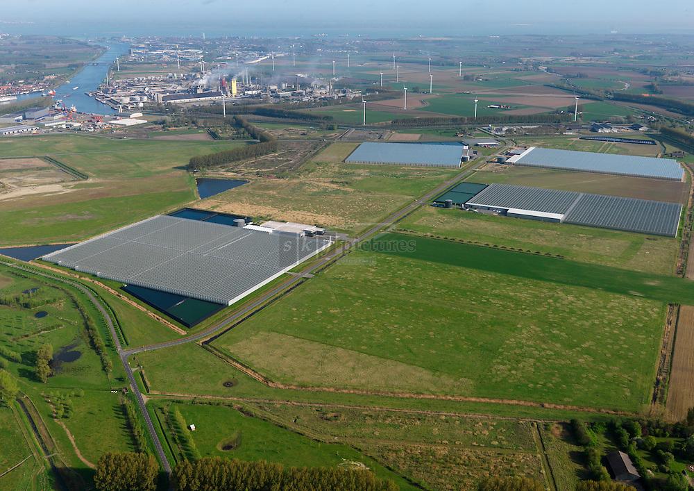 Glastuinbouw gebied biopark Terneuzen op de Axelse vlakte waarbij de koppeling met bedrijven in de kanaalzone voor warmte en co2