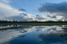 Cruysbergen GNR, Bussum, Gooise Meren, Noord Holland, Netherlands