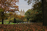 Central Park Pumpkin Festival