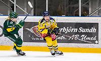 2020-01-15 | Umeå, Sweden:Björklöven (44) Olle Liss chasing Södertälje (23) Bobbo Petersson in  HockeyAllsvenskan during the game  between Björklöven and Södertälje at A3 Arena ( Photo by: Michael Lundström | Swe Press Photo )<br /> <br /> Keywords: Umeå, Hockey, HockeyAllsvenskan, A3 Arena, Björklöven, Södertälje, mlbs200115