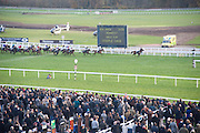 Hennessy Gold Cup, The Racecourse Newbury. 30 November 2013.