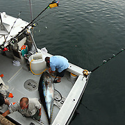 Tuna fishing off the coast of Biddeford, Maine.