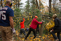Ramblin' Vewe Farm volunteer clean up following damage from the storm.    Karen Bobotas for the Laconia Daily Sun