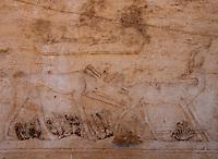 Detial of animal figures in the Sakkara friezes, Egypt.