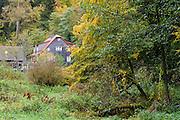 Haus, Ohrnbach, Ohrenbachtal, Odenwald, Naturpark Bergstraße-Odenwald, Hessen, Deutschland | cottage, Ohrnbach, Ohrnbach valley, Odenwald, Hesse, Germany