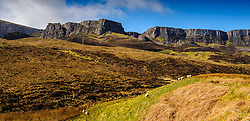 Trotternish Ridge in the North East of Skye, Scotland<br /> <br /> (c) Andrew Wilson | Edinburgh Elite media