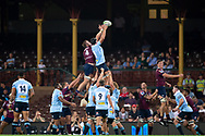 SYDNEY, NSW - MARCH 09: Waratahs player Rob Simmons (5) and Reds player Izack Rodda (4) go up for the ball at round 4 of Super Rugby between NSW Waratahs and Queensland Reds on March 09, 2019 at The Sydney Cricket Ground, NSW. (Photo by Speed Media/Icon Sportswire)