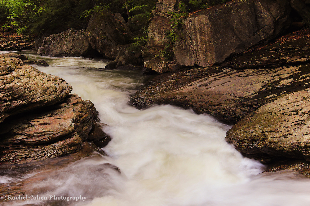 &quot;Rockin the Run&quot; 3<br />