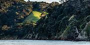 Deadmans Bay, Waiheke Island, Hauraki Gulf, New Zealand. Classic early morning, farm land, native bush, and coast.