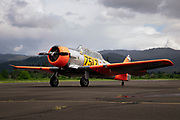 AT-6 Texan in South African colors.