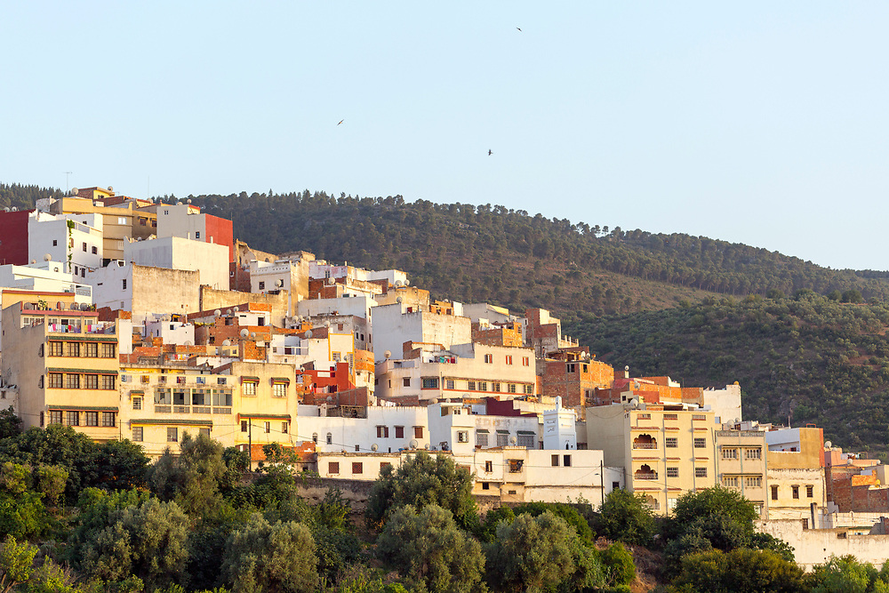 View over the Medina of Moulay Idriss Zerhoun, Middle Atlas, Morocco, 2016-06-13.