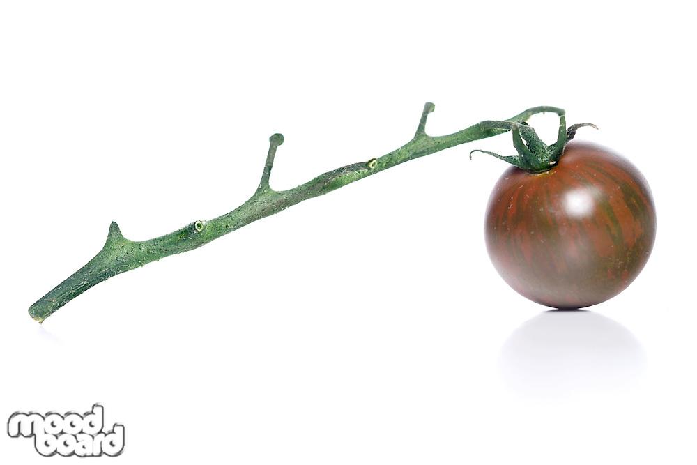 Black cherry tomatoes on white background