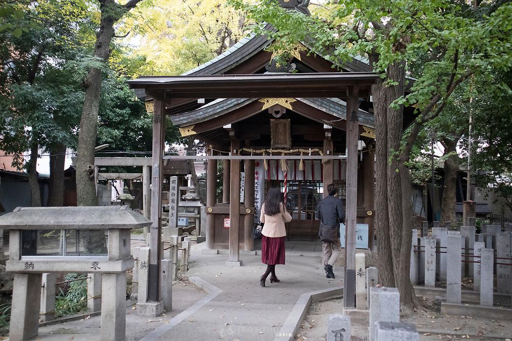 Autumn at a Japanese Shrine in central Nagoya city.