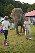 Old Bethpage, New York, USA. 28th September 2014. Minnie the 8,000 pound African elephant is with her trainer at the Elephant Show, with the Exhibition Hall in the background, at the 172nd Long Island Fair, a six-day fall county fair held late September and early October. A yearly event since 1842, the old-time festival is now held at a reconstructed fairground at Old Bethpage Village Restoration.