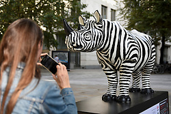 **CAPTION CORRECTION - Rhino statues are 750mm tall, not 750cm tall, as stated in previous captions**<br /> © Licensed to London News Pictures. 20/08/2018. LONDON, UK. An office worker takes a photo of 'Freddie', a rhino painted by Glen Baxter, outside Guildhall.  At 750mm tall and weighing 300 kg, each rhino has been specially embellished by an internationally renowned artist.  21 rhinos are in place at a popular location in central London, forming the Tusk Rhino Trail, until World Rhino Day on 22 September to raise awareness of the severe threat of poaching to the species' survival.  They will then be auctioned by Christie's on 9 October to raise funds for the Tusk animal conservation charity.  Photo credit: Stephen Chung/LNP