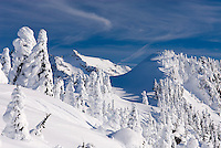 Winter on Kulshan Ridge Heather Meadows Recreation Area North Cascades Washington USA