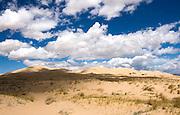 Kelso Dunes, Mojave Desert II