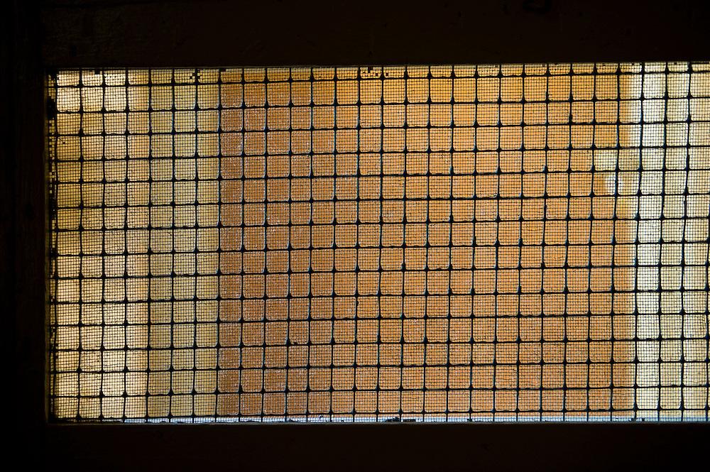 Looking through an old country screen door.