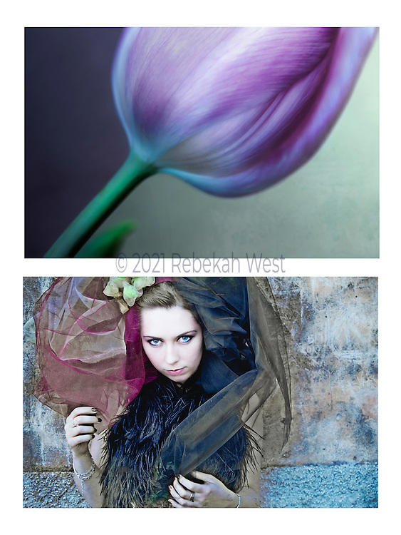 "Caption: ""Tulipe"" Genus: Wonder. Diptych photographic art by Rebekah West. Description: Vertical pairing of images: iridescent purple tulip and pale-faced girl against wall holding edges of floral shaped net hat."