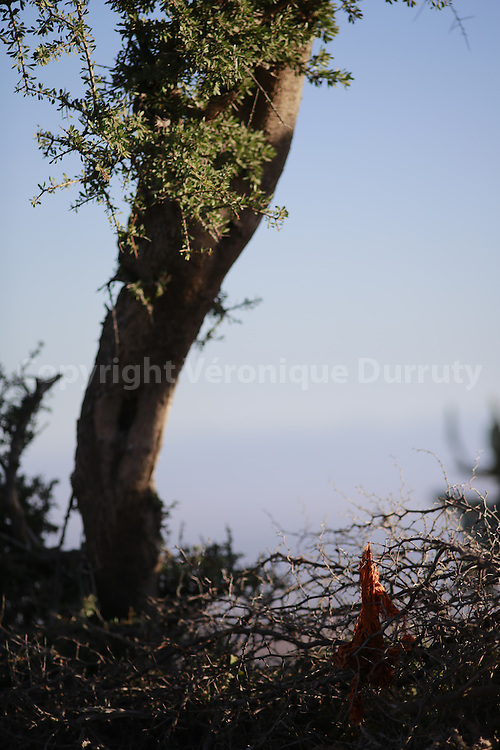 Village de Taghzot, région d'Agadir, Maroc // Taghzot village, Southern Morocco