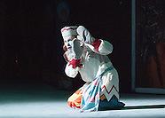 Petrushka from the wings 27.07.13