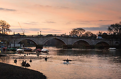 Richmond, London, February 17th 2016. Dawn breaks over the River Thames. <br /> ///FOR LICENCING CONTACT: paul@pauldaveycreative.co.uk TEL:+44 (0) 7966 016 296 or +44 (0) 20 8969 6875. &copy;2015 Paul R Davey. All rights reserved.